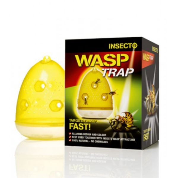 Insecto Wasp Trap