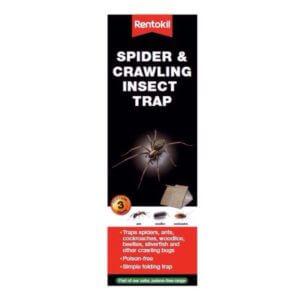 Rentokil spider traps
