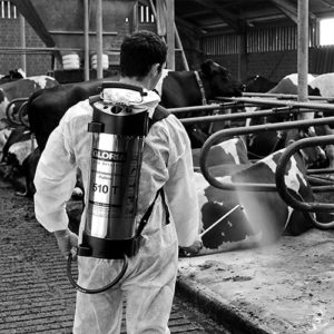 Professional Insecticides-Rodenticides