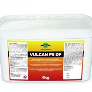 vulcan p5 wasp powder 4kg