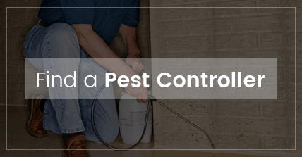 find-a-pest-controller-image